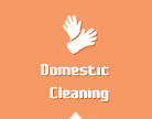 Cleaner Battersea